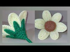 Cactus Plants, The Creator, Crochet, Flowers, Youtube, Crochet Flowers, Amor, Mexican, Cacti