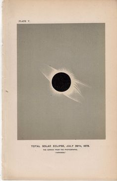 1885 sun solar eclipse original antique celestial astronomy print. $22.50, via Etsy.