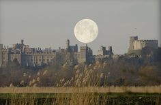 When I was a little boy, all castles looked like this in my imagination.  This one's real - Arundel Castle, West Sussex