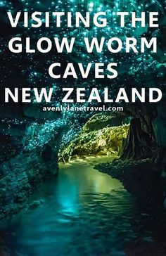 Visiting The Glow Worm Caves In New Zealand. This is a MUST see if you are ever… Visiting The Glow Worm Caves In New Zealand. This is a MUST see if you are ever travelling to New Zealand – Avenly Lane Travel Oceania Places To Travel, Places To See, Travel Destinations, Travel Tourism, Glow Worm Cave, Destination Voyage, New Zealand Travel, Trip To New Zealand, Visit New Zealand