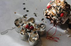 DIY holiday bird feeders. Might make these with the kids next year. (Suet ornaments provide wild birds with essential fats--especially seasonal insect eaters.)