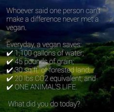 Whoever said one person can't make a difference have never met a vegan. EVERYDAY a vegan saves: gallons of water, 45 pounds of grain, 30 square foot of forest land, 20 lbs equivalent and one animal's life. Vegan Facts, Vegan Memes, Vegan Quotes, Vegan Humor, How To Become Vegan, How To Make, Angst Quotes, Reasons To Be Vegan, Why Vegan