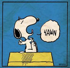 Good morning, Snoopy!