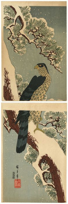 """Hawk and Pine Tree"" by Ando Hiroshige (1797-1858), ca. 1830"