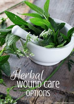 Wound Care Options More advanced information for taking your herbal medical knowledge to a higher level.More advanced information for taking your herbal medical knowledge to a higher level. Holistic Remedies, Natural Health Remedies, Herbal Remedies, Healing Herbs, Medicinal Plants, Natural Healing, Wound Healing, Holistic Healing, Natural Medicine