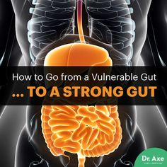 "Your intestinal barrier acts as the ""traffic controller"" for what gets in or out of your intestines and into your bloodstream."