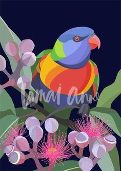 Rainbow Lorikeet limited edition art print on a dark navy background. By Australian artist Lamai Anne. Bring the Australian outdoors into your home. Abstract Flowers, Abstract Art, Painting Inspiration, Art Inspo, Australian Wildflowers, Rainbow Art, Bird Pictures, Australian Artists, Animal Drawings