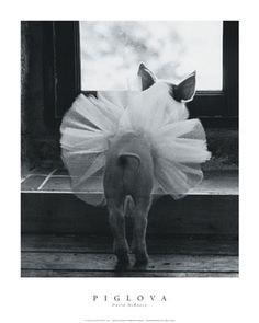 Just a Pig in a Tutu....this reminded me of Toot & Puddles
