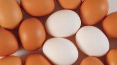For years, the egg has gotten a bad rap. I crack open the controversy and reveal the truth behind one of the confusing foods of all on this NPR Growing Bolder Radio segment http://growingbolder.com/media/health/nutrition/dr-susan-mitchell-eggs-859155.html and http://pinterest.com/pin/112238215686096473/