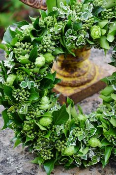 Spring Wreath - Flowering ivy, Euonymus and hops., Spring Wreath - Flowering ivy, Euonymus and hops. Green Wreath, Floral Wreath, Fresh Flowers, Beautiful Flowers, Corona Floral, Christmas Door Wreaths, Wreaths And Garlands, Sympathy Flowers, Deco Floral