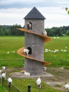 Goat Tower.. OMG @Jessica Young they would LOVE it!! My handy-man bf would totally make this haha!