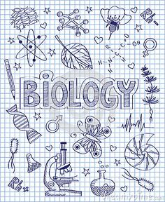 Binder cover coloring page for high school / middle school class - SCHOOL NOTES Easy Doodle Art, Doodle Art Drawing, School Binder Covers, Tattoo Painting, Middle School, High School, School School, Bullet Journal Banner, School Notebooks