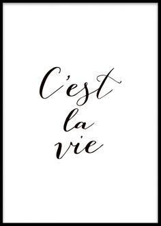 Teksti Hallitus c'est la vie, mustavalkoinen juliste tekstillä