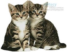 Two Tabby Kittens - cross stitch pattern designed by Tereena Clarke. Category: Cats.
