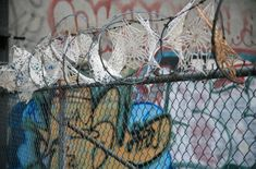 bombing: Crystal Gregory - Invasive Doilies, 2011Crocheted doilies on razor wire fences in New York City