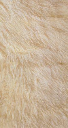 #fur #wallpaper
