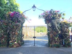 The gates are nearly open! RHS Chelsea flower show 2017.