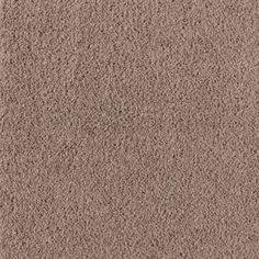 Bonus Room, Hall to Bed 33 & 4 Carpet - Top Card Carpet, Palisade Carpeting   Mohawk Flooring