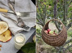 Homestyle Magazine food feature:Homestyle Magazine - Preserves food featureTaste Magazine - Spongedrop CakeSkinfood Brand Campaign:Magnolia Rouge magazine - Vanilla Food feature:Petite Kitchen - Second book - due out October magazine… Photography Portfolio, Food Photography, Wedding Photography, Petite Kitchen, Kinfolk Magazine, Preserving Food, Forest Wedding, Natural Light, Harvest