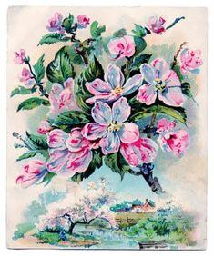 Vintage Clip Art - Gorgeous Pink Blossoms - The Graphics Fairy