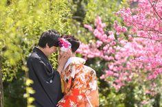 京都で撮った結婚式の前撮りとしての和装でロケーションフォトの新郎新婦の桜の季節の写真