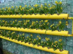 Canos de PVC em floreira vertical, um charme