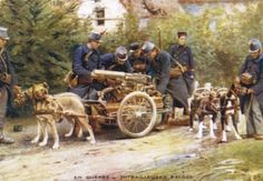 Belgian Carabiniers and their dogs