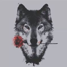 The wolf and the rose!
