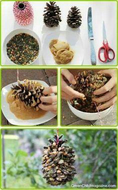 .Pine cone bird feeder, cute gift for bird watchers.