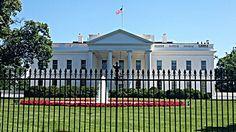 Vivendo em NY: Washington DC