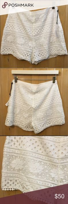 """Cupcakes and Cashmere """"Erin Lace Shorts"""" Adorable for summer! Lightweight eyelet shorts. Hidden side zipper, fully lined, and grosgrain waistband. 3 inch inseam and 14 inches long total. I would consider these a medium/high rise cut. Shorts"""