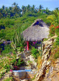 #Puerto Escondido, Oaxaca, Mexico photo by Tracy Verdugo http://artoftracyverdugo.blogspot.com