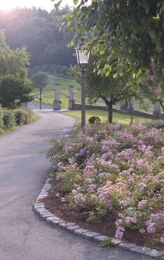 HAINMÜLLER Gartengestaltung in Radolfzell am Bodensee