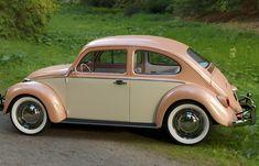 Volkswagon Bug, Volkswagen New Beetle, Volkswagen Golf, Retro Cars, Vintage Cars, Antique Cars, Vans Vw, Jaguar F Typ, Kdf Wagen