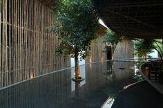 Palissade de jardin en tiges gigantesques de bambous