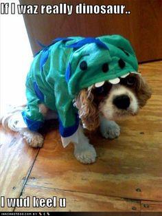 Awww, poor dinosaur doggie
