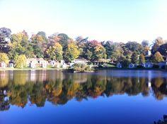 Autumn lakeside view at Greenwood Cemetery. Greenwood Cemetery, Lakeside View, Autumn, Beautiful, Fall Season, Fall