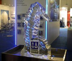 Custom ice sculpture that we have produced for a customer. Learn how to start successfully this easy business in your Country. Visit our company's website for the business opportunity that we offer.