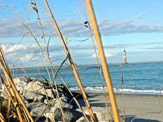 Folly Beach, South Carolina.  Missing home!