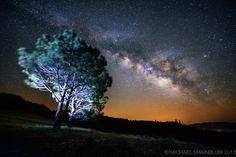 "500px / Photo ""Galaxy Trees"" by Michael Shainblum"