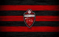 Download wallpapers Shabab Al-Ahli FC, 4k, logo, UAE League, soccer, football club, UAE, Shabab Al-Ahli, creative, wooden texture, FC Shabab Al-Ahli