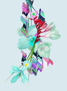 Alain Vonck- digitally manipulated futuristic florals