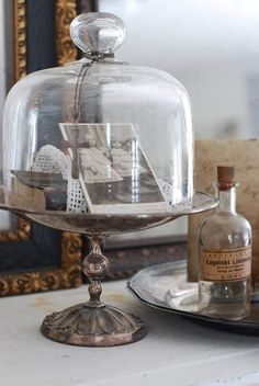 Display treasures under glass cloche . Glass Bell Jar, The Bell Jar, Glass Jars, Bell Jars, Glass Dome Display, Glass Domes, Homemade Wall Decorations, Cloche Decor, Apothecary Jars