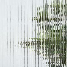 Corrugated Glass