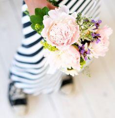 flower and stripes - winny?