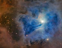 Iris Nebula, located in Cepheus constellation; bright reflection nebula; 1300 light years away, 6 light years across.