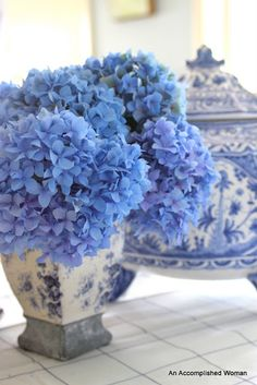 blue hydrangeas in blue and white