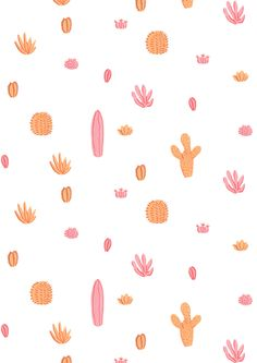 pink & orange cacti / maya bee illustrations.
