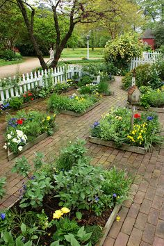 Love all the old bricks around the beds and of course the white picket fence.  Beautiful little garden