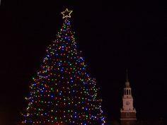 Christmas Tree on Hanover Green